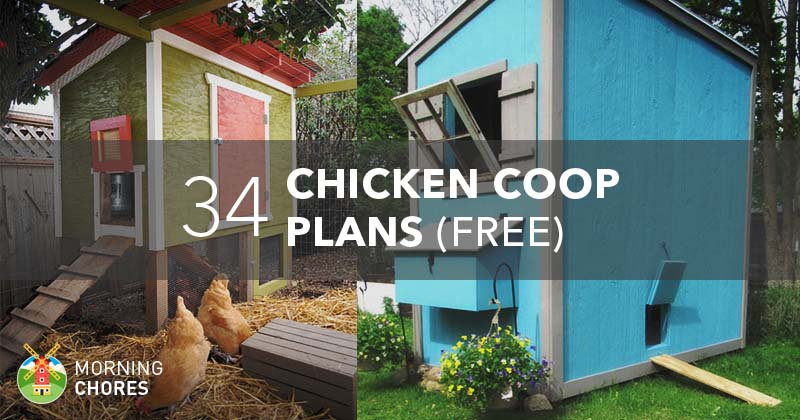 34 diy chicken coop plans that are easy to build 100 free - Chicken Coop Design Ideas
