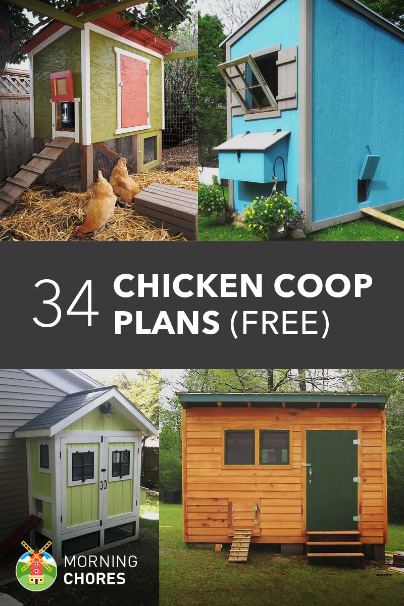 61 diy chicken coop plans that are easy to build 100 free for Plans for chicken coops