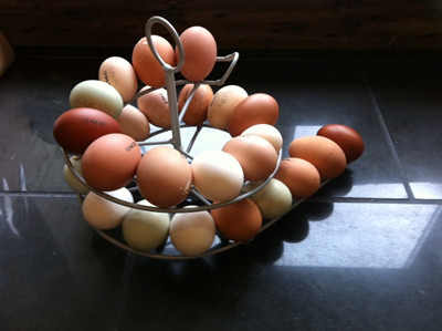 Egg Skelter for clean eggs