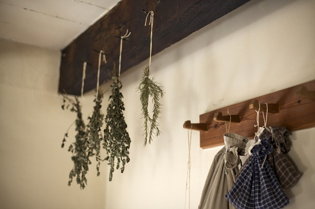 Drying herbs to sell to make money homesteading