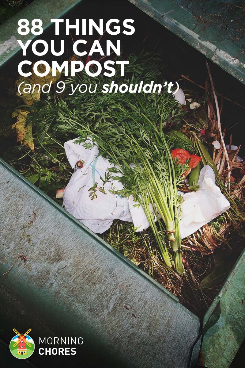 88 Everyday Things You Can Compost And 9 You Shouldn T