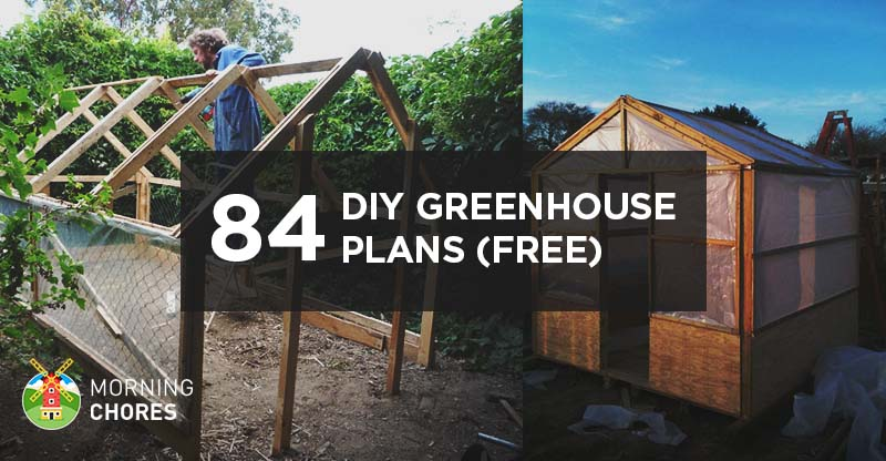 125 DIY Greenhouse Plans You Can Build This Weekend (Free) Greenhouse Backyard Plans on backyard windmill plans, backyard house plans, royal greenhouses of laeken, backyard gazebo plans, backyard permaculture plans, backyard studio plans, backyard swing plans, backyard organic gardening, backyard pergola plans, sustainable gardening, seawater greenhouse, backyard pool plans, backyard shop plans, backyard home, backyard playhouse plans, cold frame, backyard chapel plans, backyard shed plans, backyard golf course plans, green wall, backyard gym plans, backyard labyrinth plans, backyard garage plans, backyard fireplace plans,