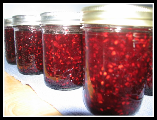 Blackberry-Jam canning recipes