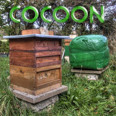 bee-hive-19