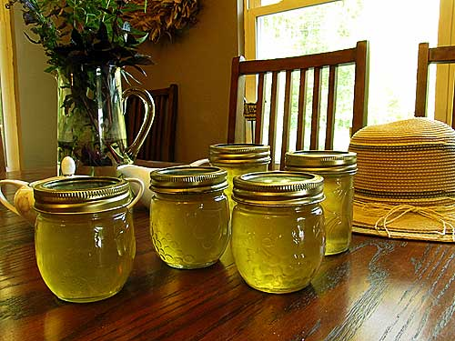 corn cob jelly can also be used for canning recipes