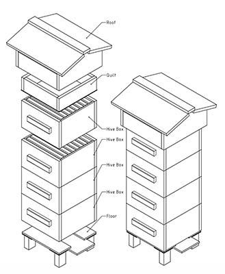 Bee Skep Diagram