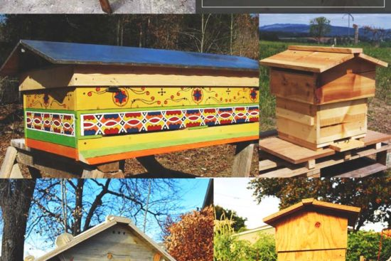 38 Free DIY Beehive Plans & Ideas That Will Inspire You To Become A Beekeeper
