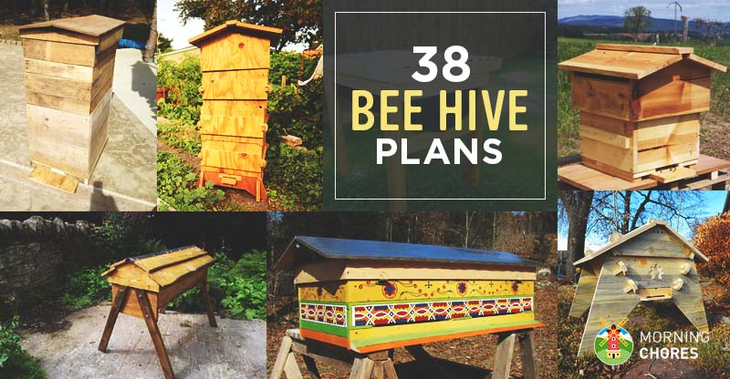 38 diy bee hive plans with step