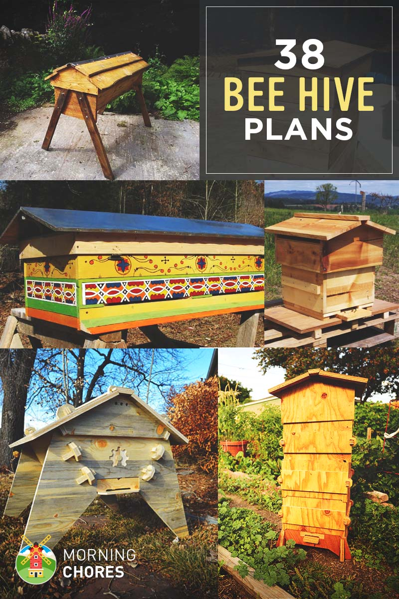 38 Free DIY Bee Hive Plans Ideas That Will Inspire You To Become A Beekeeper