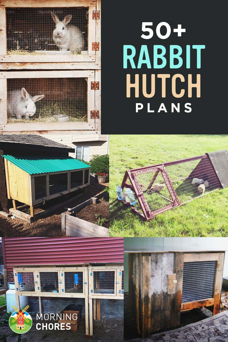 50 diy rabbit hutch plans to get you started keeping rabbits for Diy hutch plans