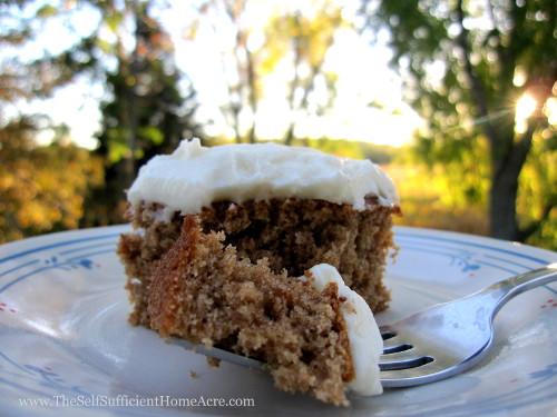 applesauce-cake