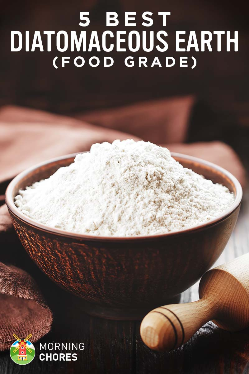 Diatomaceous Earth Food Grade Best