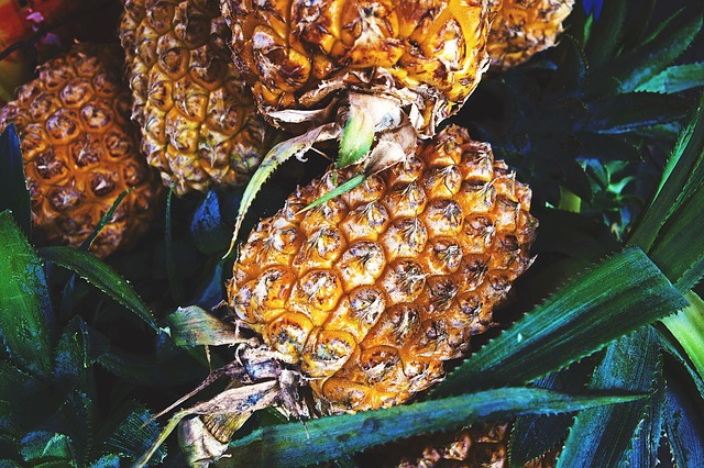Pineapples as fruits to grow in containers