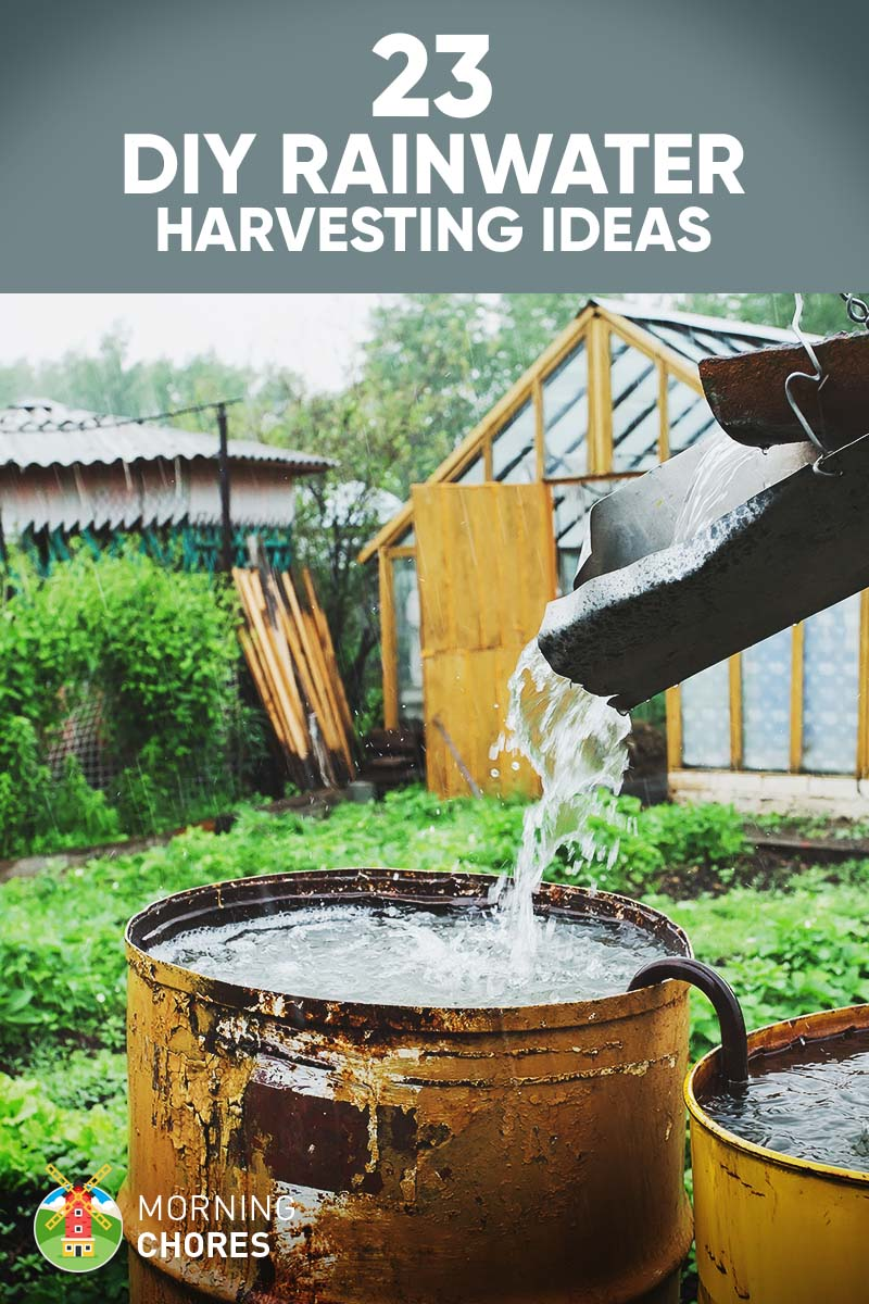 23 awesome diy rainwater harvesting systems you can build for Rainwater harvesting at home