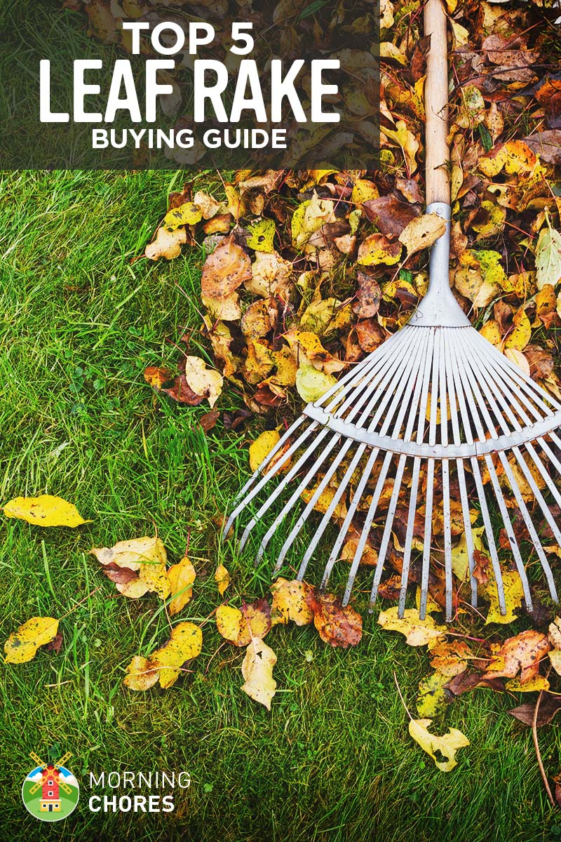 Find out which way the wind normally blows in your backyard, and start raking your leaves with the wind—even if the spot in the yard is different from where you wanted to rake the leaves.