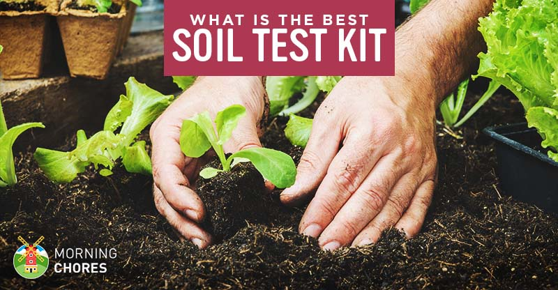 5 Best Soil Test Kits for Your Garden or Lawn - Reviews and