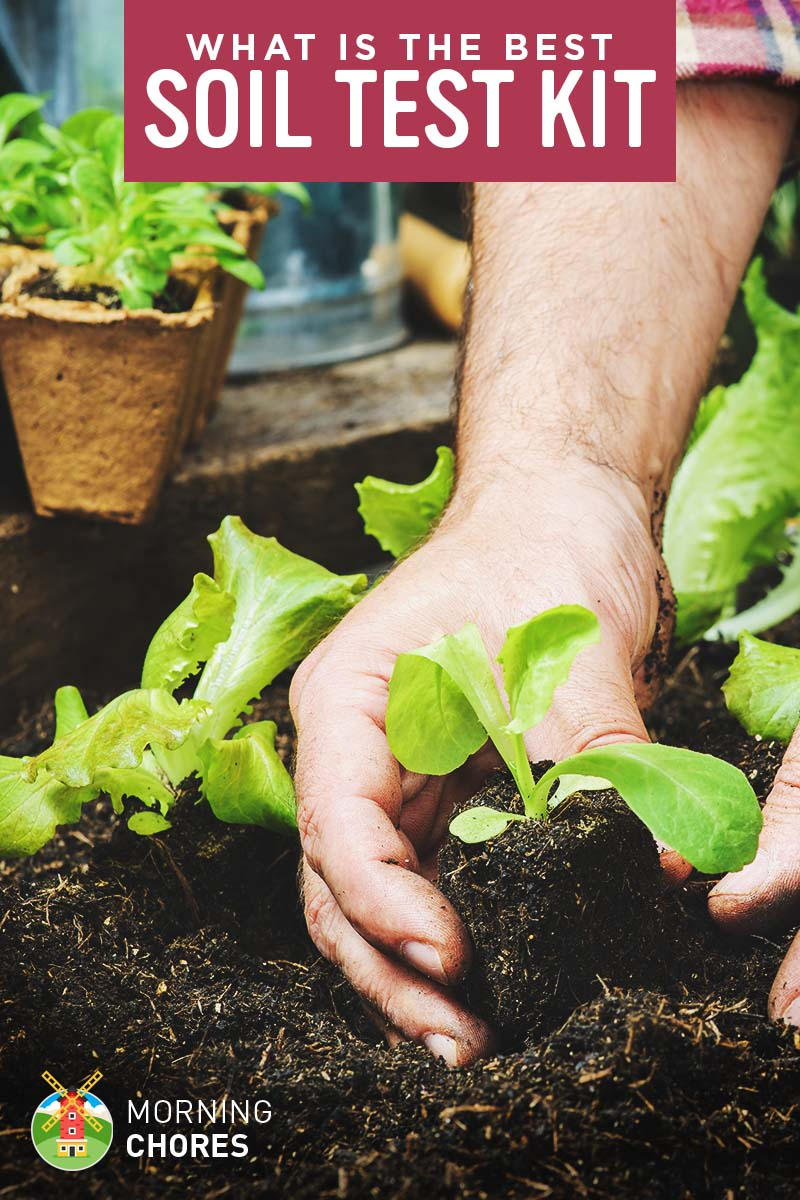 If You Like To Garden Know How Important It Is Fertilize Your Plants So That They Can Grow Healthy And Strong But Do Really What