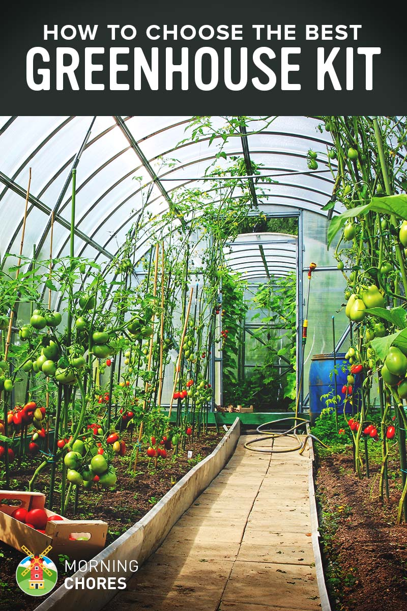 5 best greenhouse kit that will protect your plants against winter