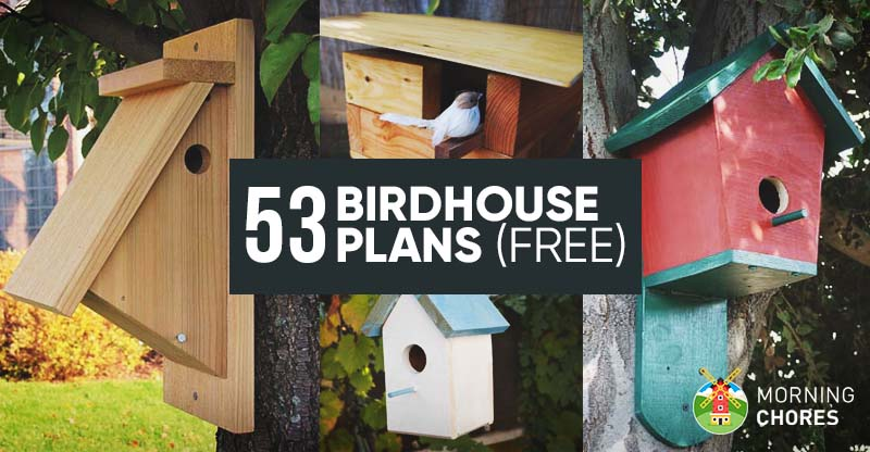 53-Free-DIY-Bird-House-Plans-to-Attract-Birds-to-Your-Garden-FB Pallet Wood Bird Houses Plans on wooden bird house plans, build bird houses plans, wood pallet birdhouse, diy bird houses plans, wood duck bird house plans,