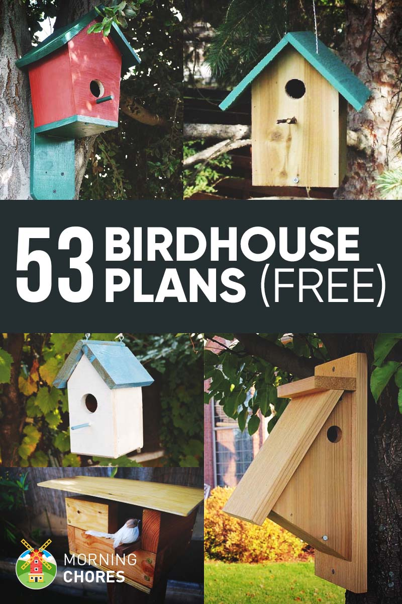 53 diy bird house plans that will attract them to your garden for Best birdhouse designs