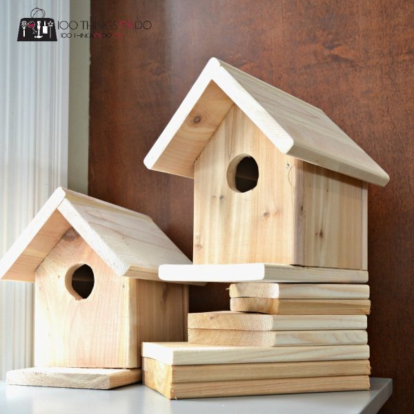 BH2-600x601 Simple Birdhouse Plans on free martin, free church, free printable wren, peterson bluebird,