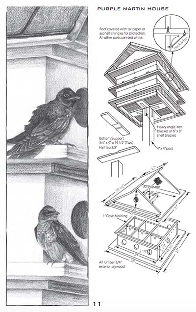 bird-house-and-feeder-plans-pdf