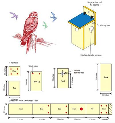 birdhouse-book-pdf birdhouse plans
