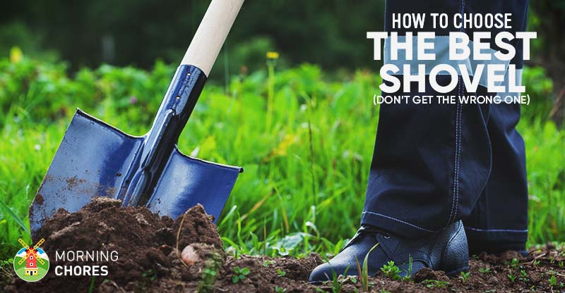 What Is The Best Shovel For Digging Here Are The Top 6
