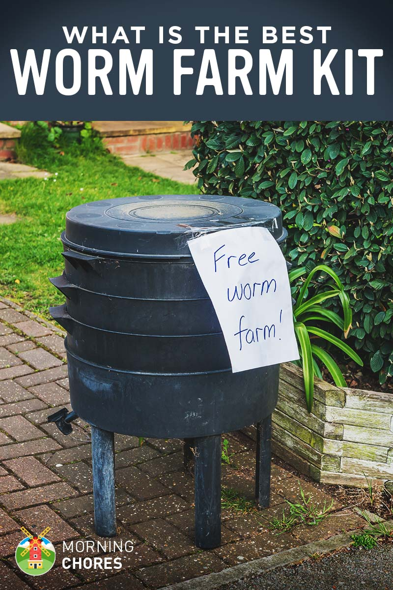 5 best worm farm kits for garden and fishing reviews for Fishing worm farm