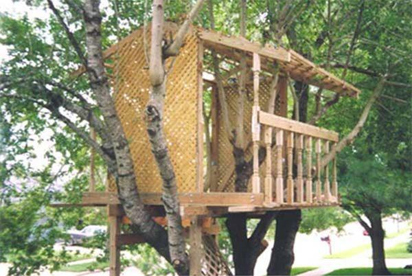 Pdf Treehouse Plans