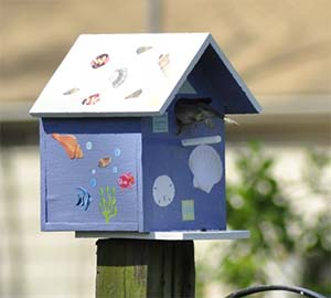 simple-birdhouse-plans