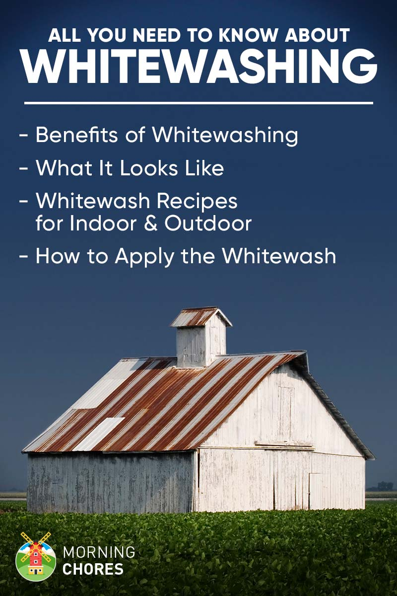 Whitewashing: The Benefits, Recipes, How to Paint, and All