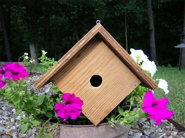 wren-birdhouse-plans