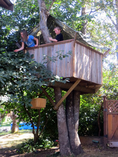 t7 Plan How To Build A Treehouse on log cabin treehouse plans, small treehouse plans, model treehouse plans, diy treehouse plans, minecraft treehouse plans,