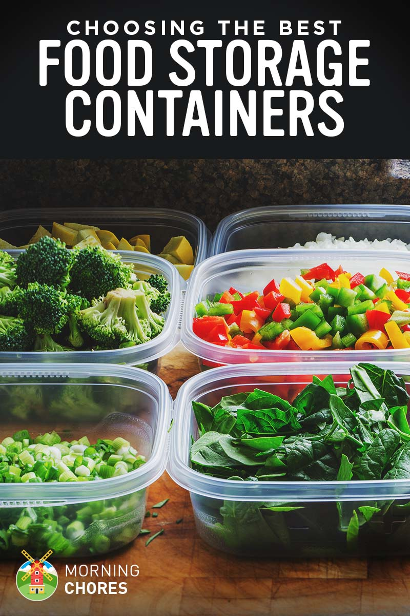 Best Containers For Storing Food In Fridge