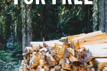 4 Ways to Get Free Firewood this Winter