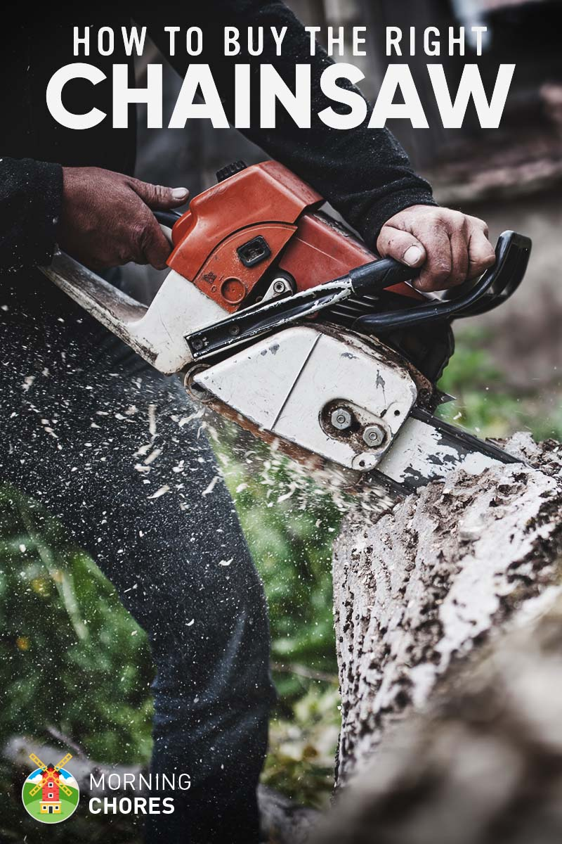 7 Best Chainsaw to Buy for the Money