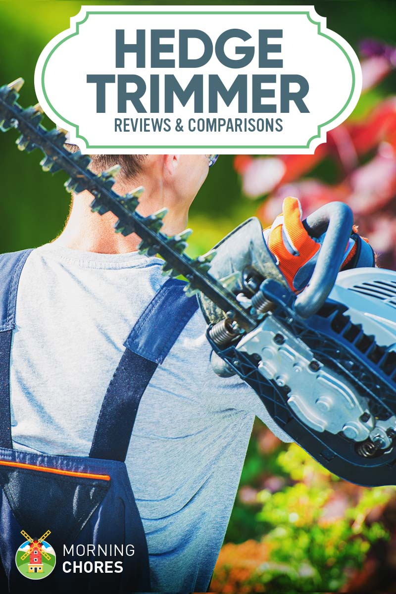 8 Best Hedge Trimmer Reviews and Comparisons