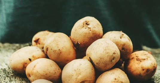 How to Grow Potatoes for Beginners