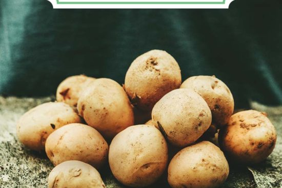 Growing Potatoes: Planting Guide, Care, Problems and Harvest