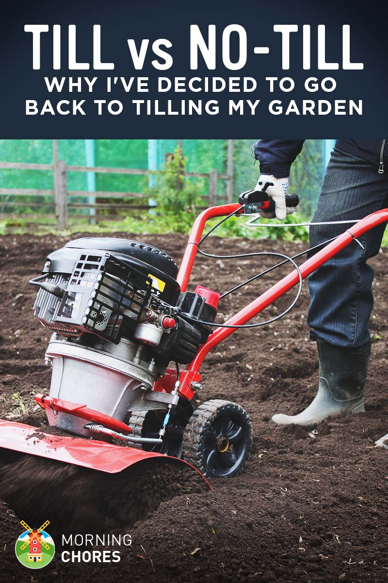 Till vs No Till Garden Pros and Cons