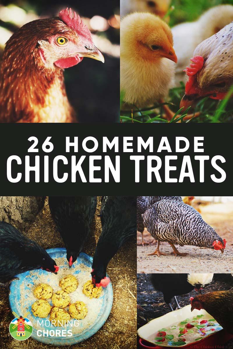 26 Homemade Healthy Chicken Treats Recipes