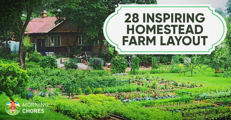 28 Farm Layout Design Ideas to Inspire Your Homestead Dream Backyard Farm Design Ideas on backyard campground design ideas, backyard pond design ideas, backyard fence design ideas, backyard garden design ideas, backyard landscape design ideas, backyard pool design ideas,