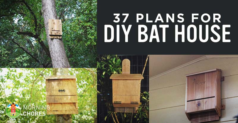 37 Free Diy Bat House Plans That Will Attract The Natural Pest Control And Save Their Lives