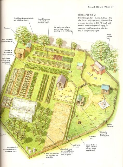 farm layout design ideas