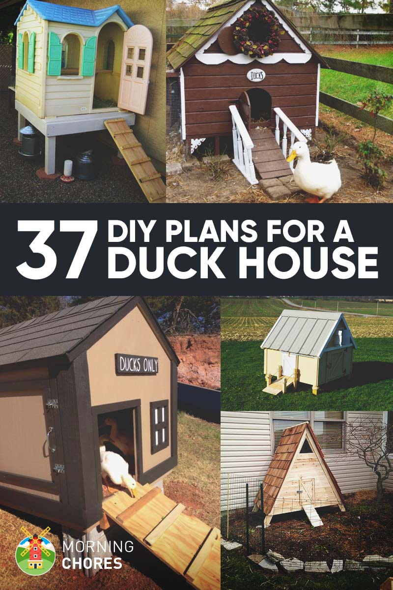 37 free diy duck house coop plans ideas that you can for Diy cottage plans