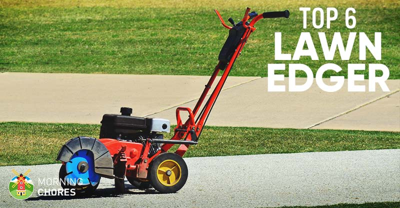 6 Best Lawn Edger (Electric and Gas) - Review & Buyer's Guide