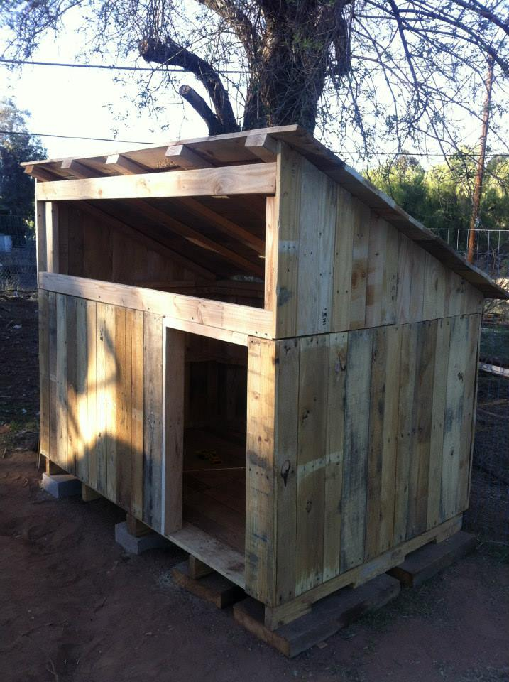 37 Free DIY Duck House / Coop Plans & Ideas that You Can ... Pallet Duck House Plans on pallet duck art, dog house plans, pallet head plans, bluebird house plans,