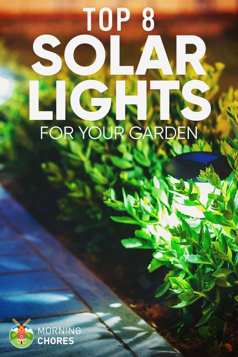 8 Best Amp Brightest Solar Lights For Garden Amp Outdoor 2017