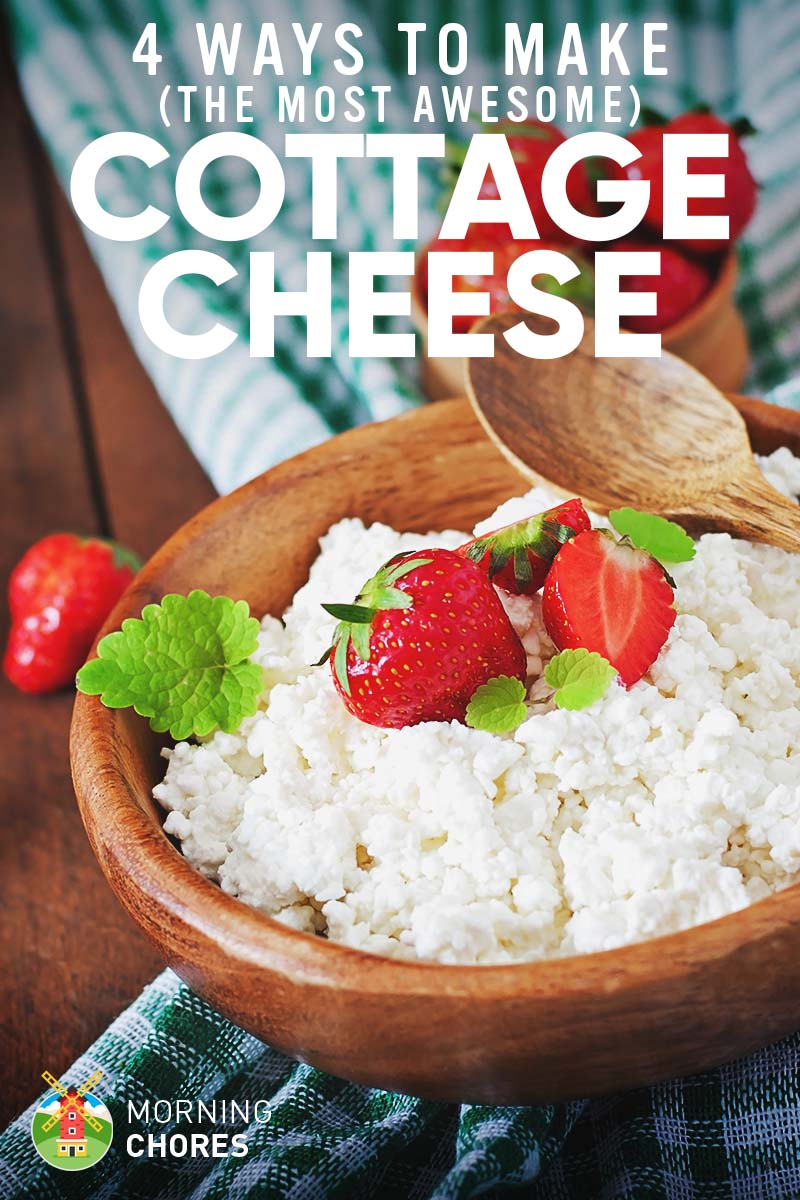 How To Make The Best Cottage Cheese Ever In 4 Different